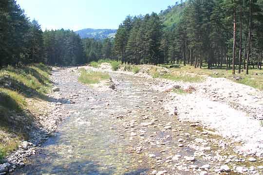 Водата - богатството на българските планини