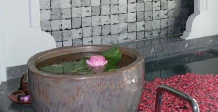 Spa вдъхновено от българската роза